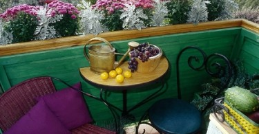 Растения на маленьком балконе