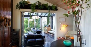 Растения в небольшой гостиной