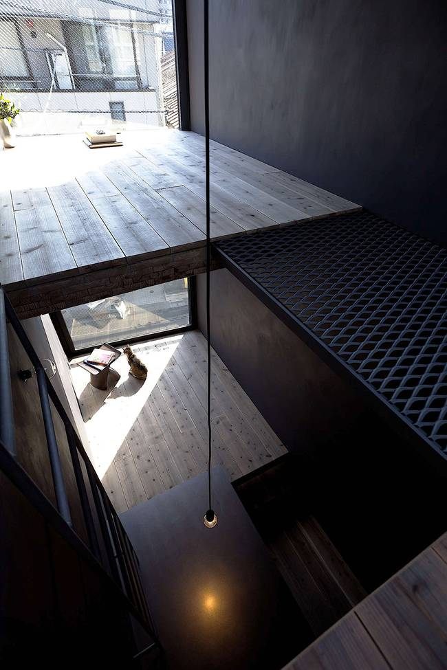 Дизайн узкого дома. Одна из обитательниц узкого дома