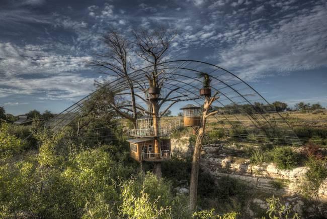 Дом на дереве для отдыха от ArtisTree. Комплекс на дереве в заповедной зоне