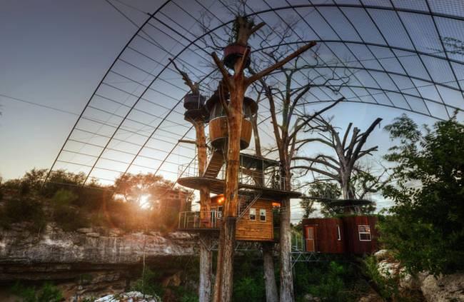 Дом на дереве для отдыха от ArtisTree. Домики расположены на разной высоте