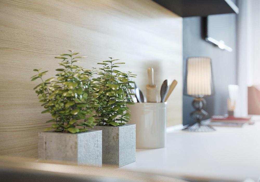 Растения в интерьере маленькой квартиры
