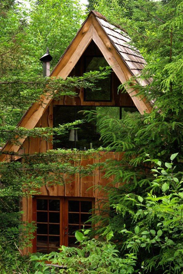 Фото лесного домика: бюджетное жильё