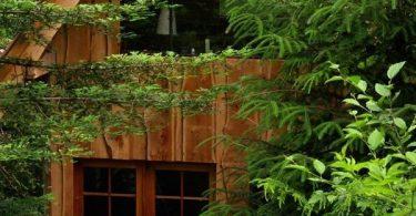 Маленький лесной домик (фото), США
