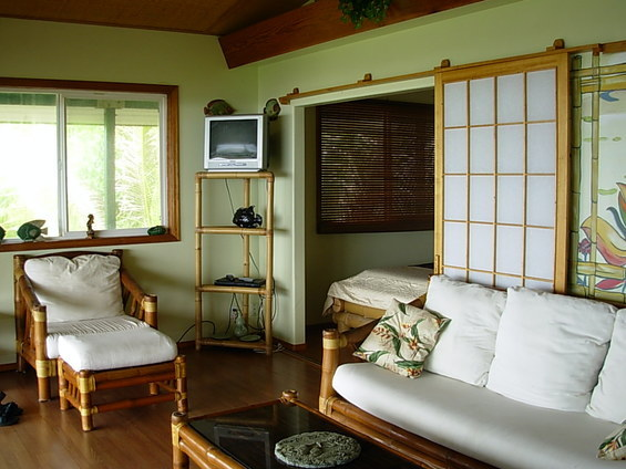 Бамбуковая мебель в гостиной