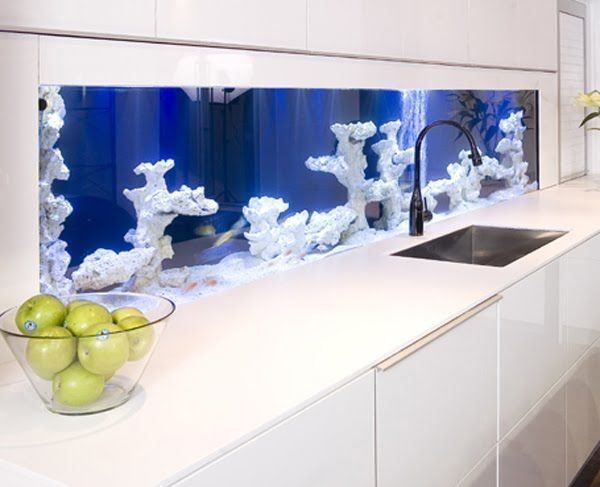 Аквариум с кораллами на кухне