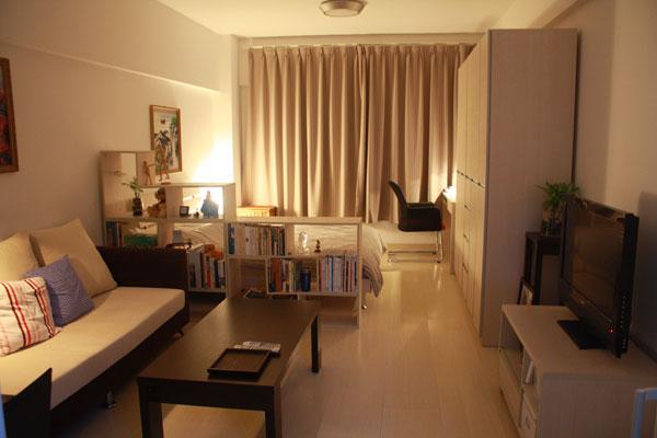 Разделение зоны гостиной и спальни стеллажом с книгами