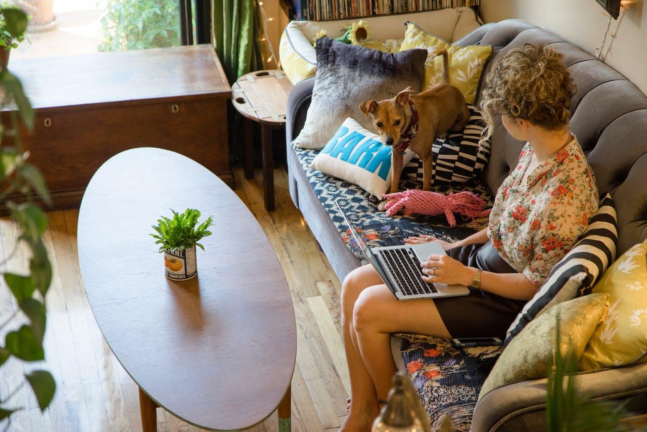 Интерьер маленькой квартирки для хозяев с собачкой