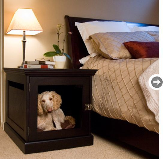 Место для собаки в прикроватной тумбочке