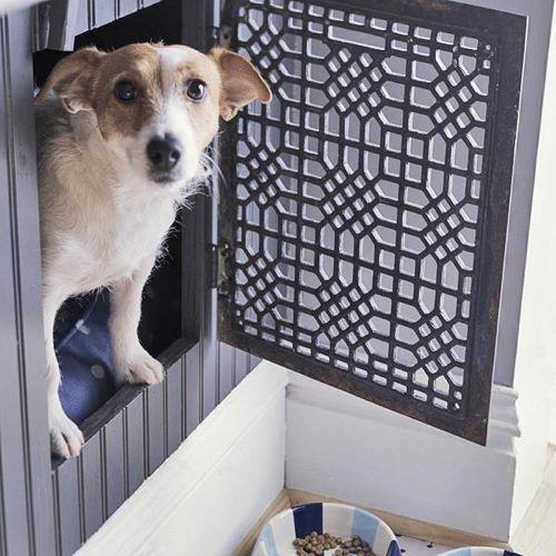 Креативная будка для собаки