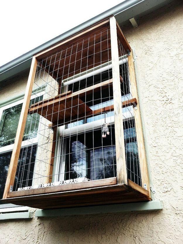 Вольер для питомца на балконе