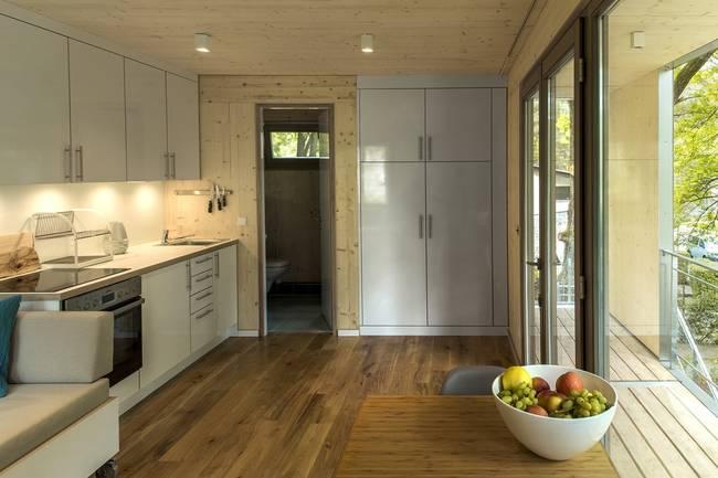 Комнаты необычного дома на дереве: кухня