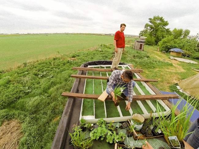Обустройство маленького дома. Озеленённая крыша в процессе строительства