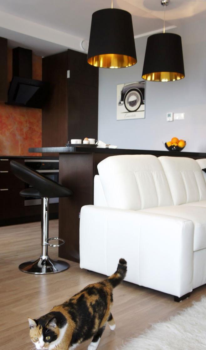 Интерьер современной квартиры-студии