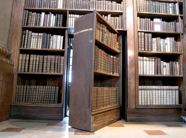 Книжный шкаф с вращающейся дверью