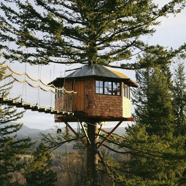 Круглый домик на дереве своими руками