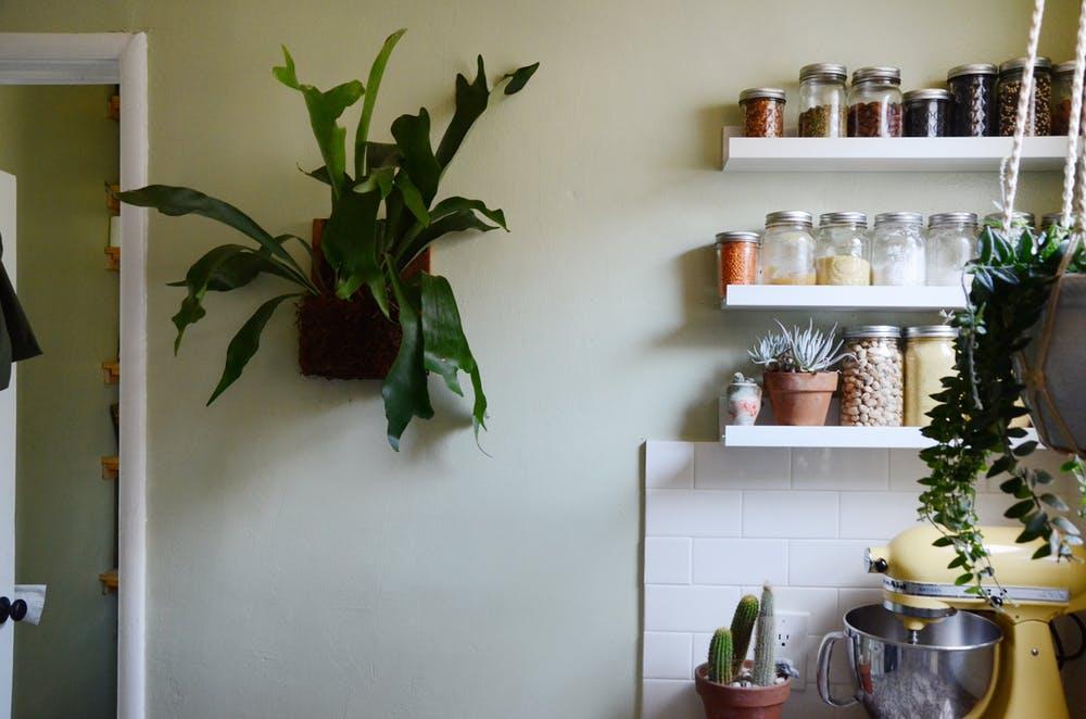 Природные мотивы в интерьере квартиры - фото 24