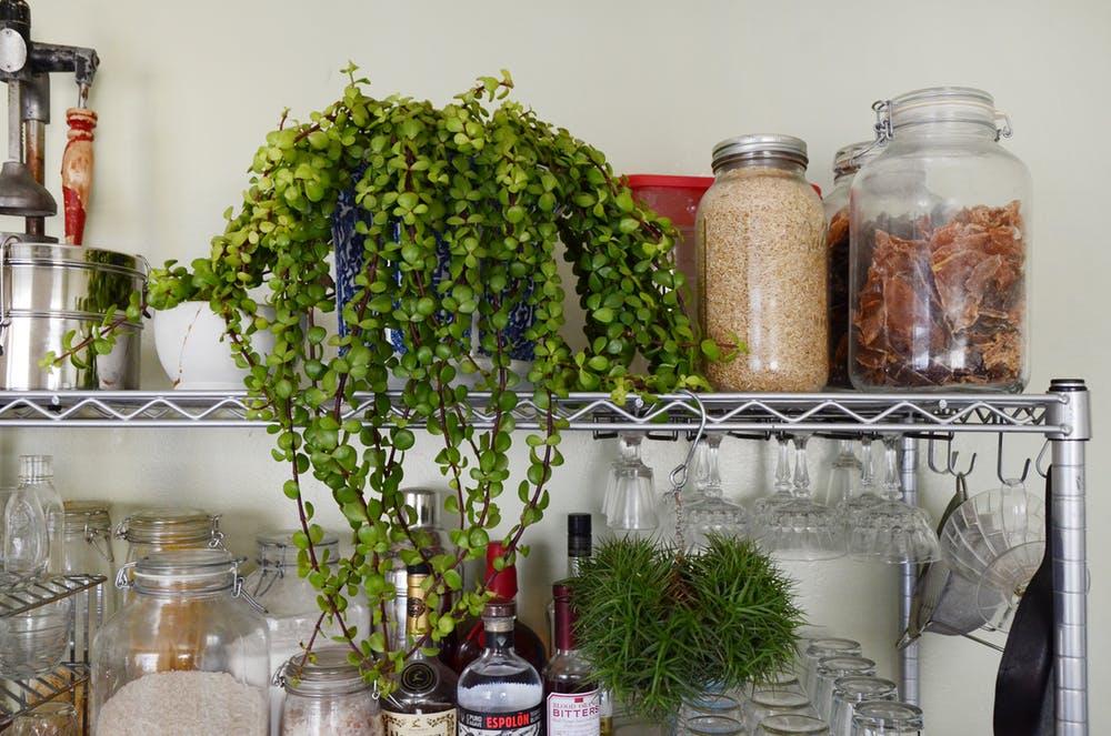 Природные мотивы в интерьере квартиры - фото 25