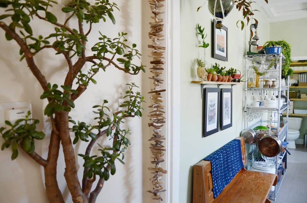 Природные мотивы в интерьере квартиры - фото 21