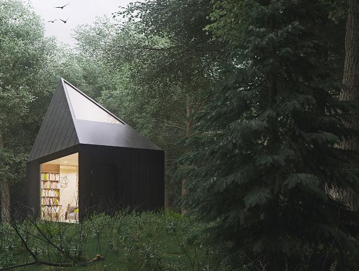 Проекты небольших домов: внешний вид маленького дома в лесу