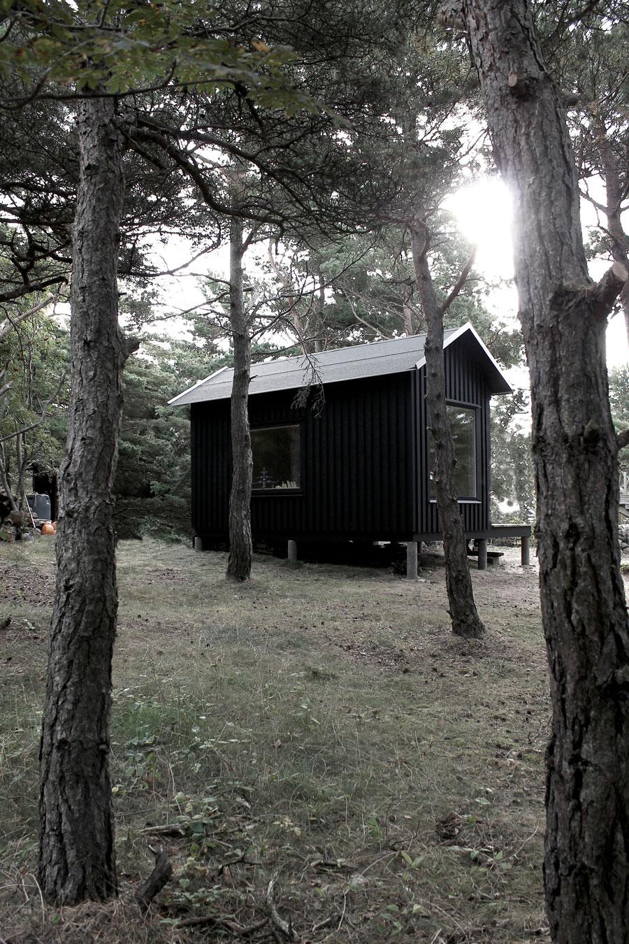 Мини-дом Ermitage Cabin в Швеции