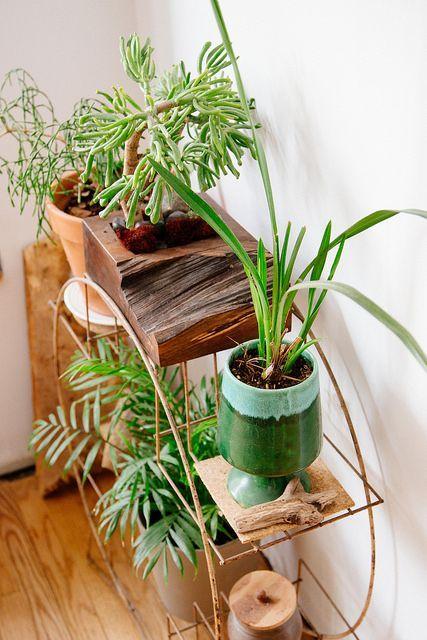 Проволочный стеллаж для растений