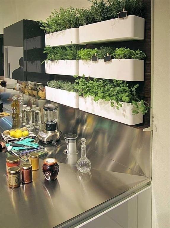 Травы в горшках на кухне
