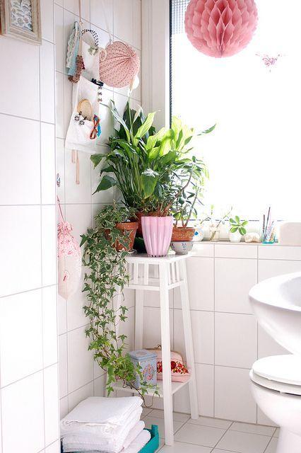 Растения в углу ванной