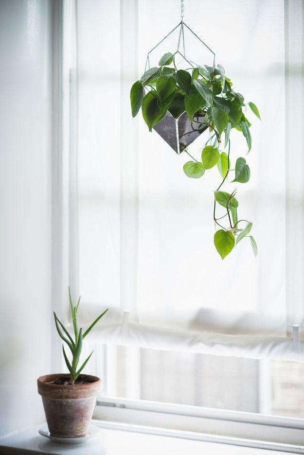 Оригинальный квадратный подвесной горшок с цветком