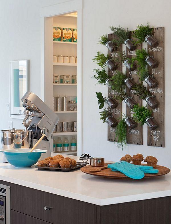 Живые пряности и травы на кухне