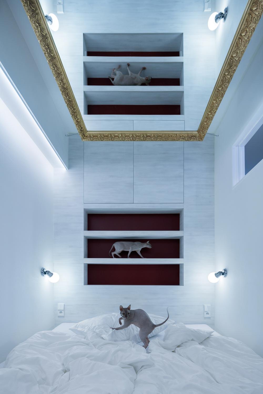 Cовременный дизайн небольшой квартиры  - коты в интерьере