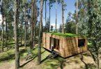 Маленький домик в лесу с моховой крышей