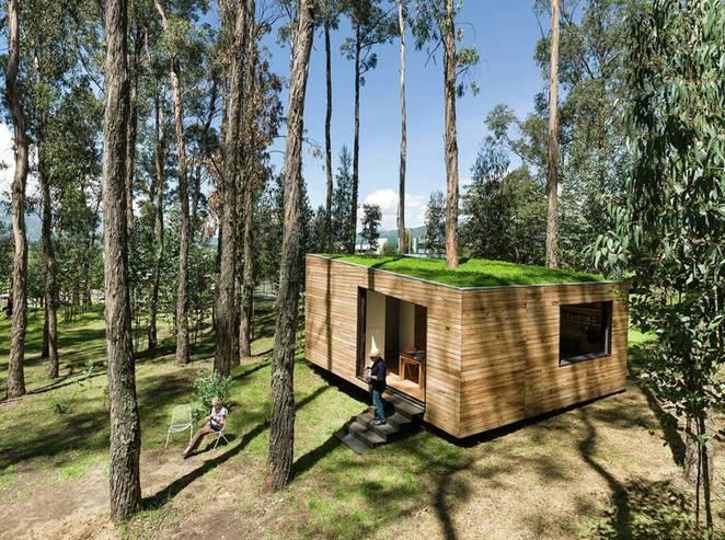 Эквадорский маленький домик в лесу с моховой крышей
