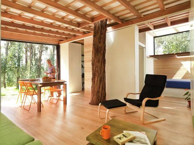 Эквадорский маленький домик в лесу: естественное освещение