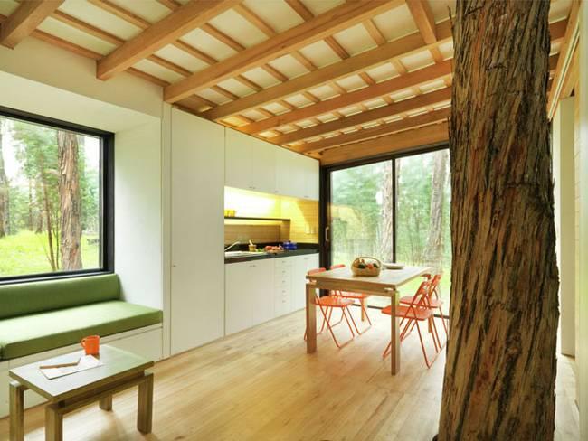 Эквадорский маленький домик в лесу. Дерево в столовой