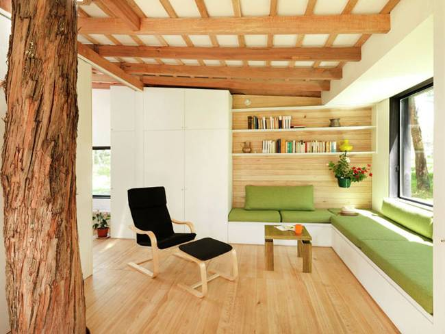 Эквадорский маленький домик в лесу. Дерево в комнате