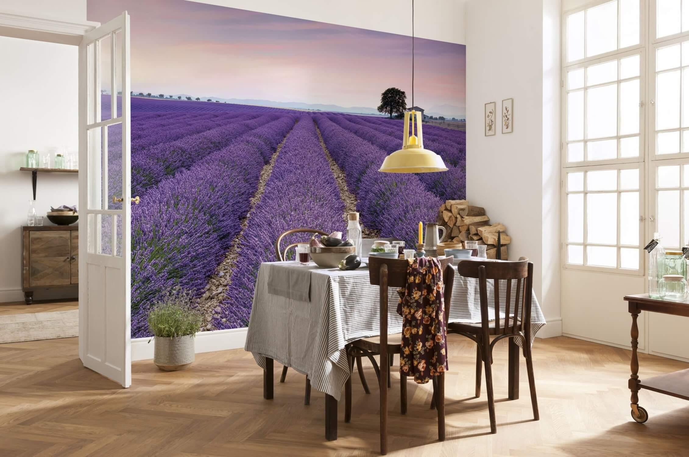 Фотообои лавандовое поле в столовой