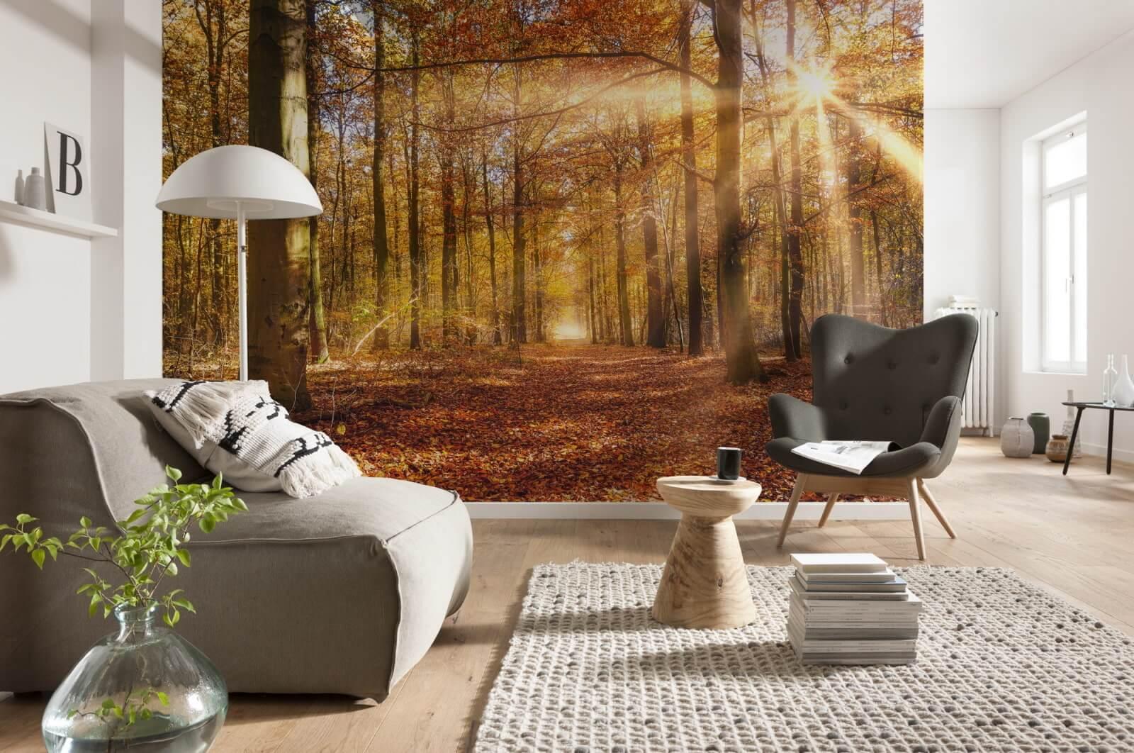 Фотообои лес в гостиной